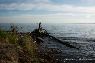 Looking towards Hamilton from the Island