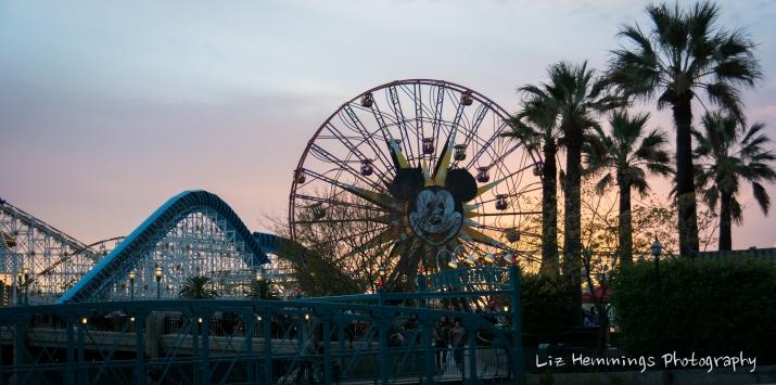 Disneyland - Jan 2017-8858