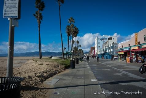 Venice Beach - Jan 2017-8987