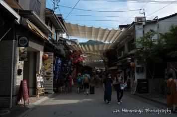 Miyajima Isalnd Japan August 2017-1451