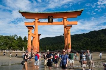 Miyajima Isalnd Japan August 2017-1493