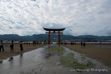 Miyajima Torii Gate Japan August 2017-1480