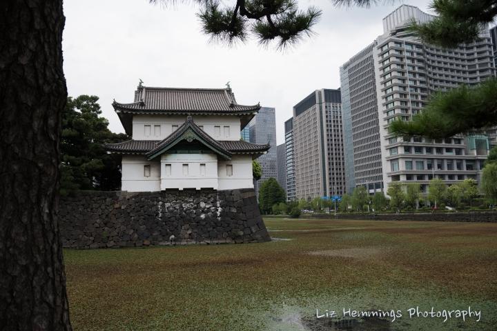 Tokyo Japan-0781