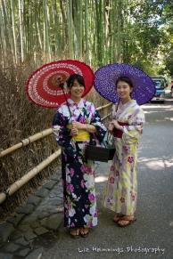 Arashiyama Kyoto Japan August 2017-1841