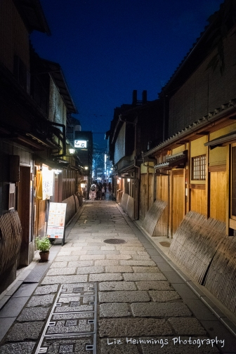 Nishiki Markets and Gion Geisha District Kyoto Japan August 2017-1871