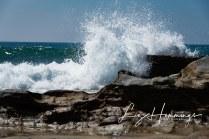 Road Trip Day 1. Huntington Beach and Laguna Beach-5208