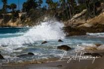 Road Trip Day 1. Huntington Beach and Laguna Beach-5214