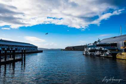 Hobart Day 1 April 2019-8866